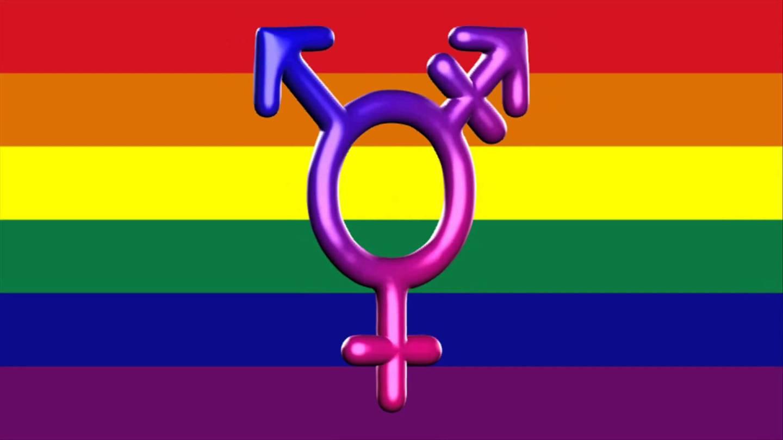 transandgayflag